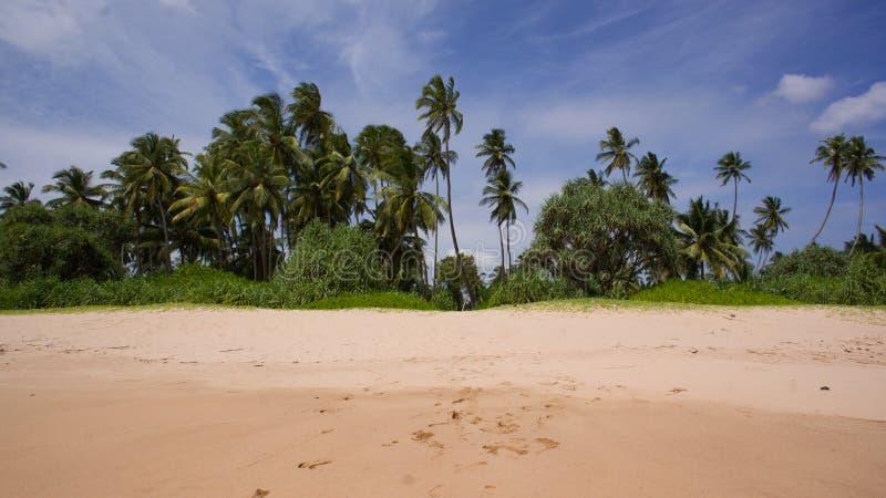 Sri Lanka - Tangalle fotografia de stock royalty free