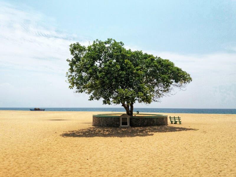 Sri Lanka wschodnie wybrzeże Batticaola fotografia stock