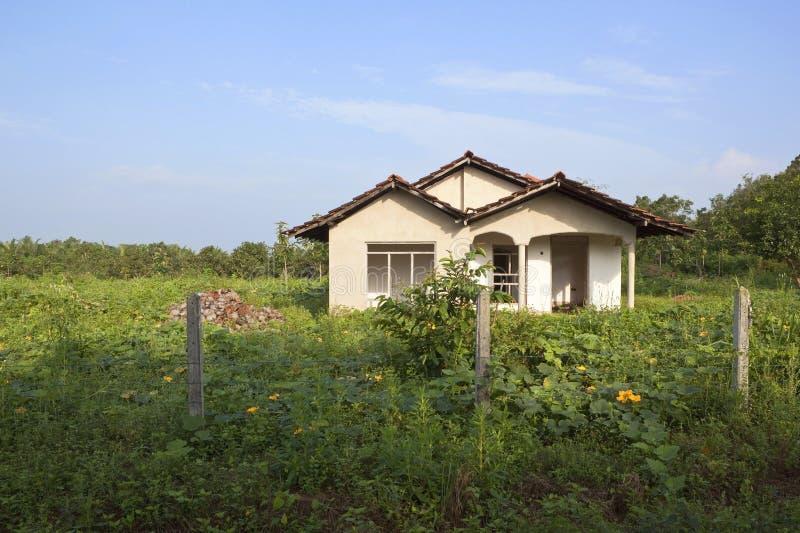 Download Sri lankan farmhouse stock photo. Image of plants, vegetation - 18415790