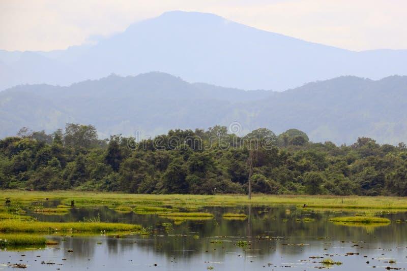 Sri lankan Landschaft lizenzfreies stockbild
