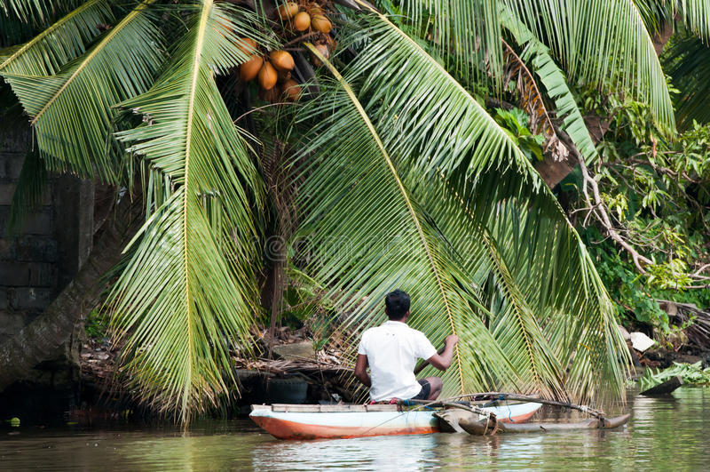 Sri Lankian fiskare i ett fartyg på en flod fotografering för bildbyråer