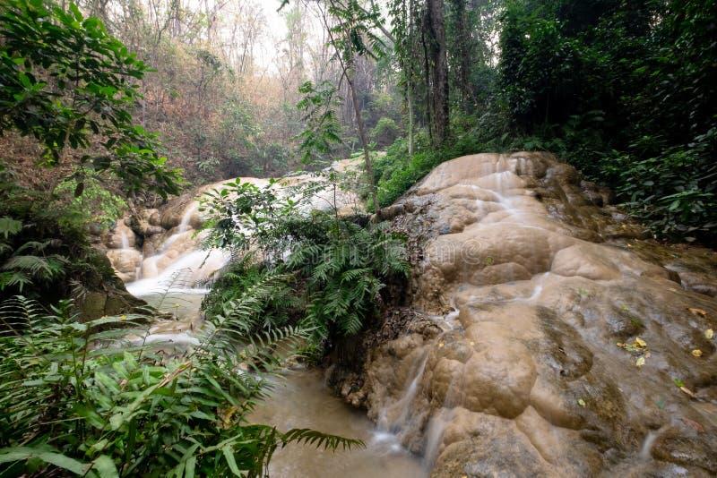 Sri Sang Wan Waterfall, Pha Dang National Park, Chiangmai Thailand royaltyfria bilder
