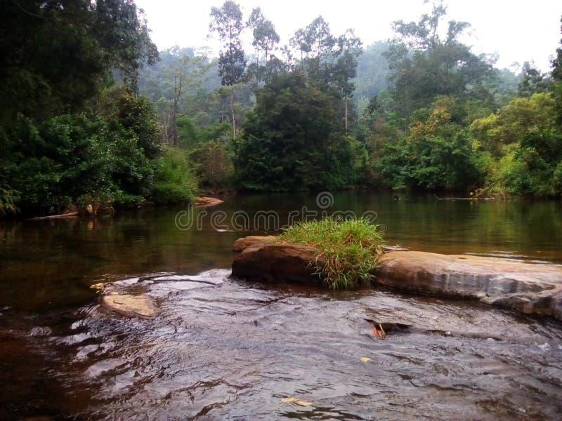 Srilanka royalty free stock image