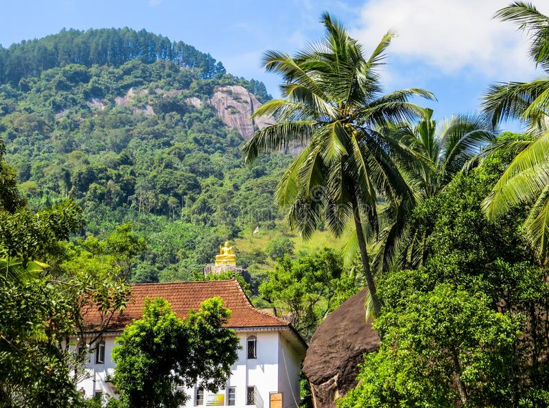 Sri Lanka. Typical Srilankan landscape, with palm trees, green vegetation and a golden statue of Buddha in the background stock photography