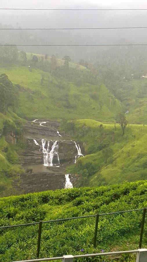 A srilankan waterfall. A waterfall with natural beauty of srilanka stock photos