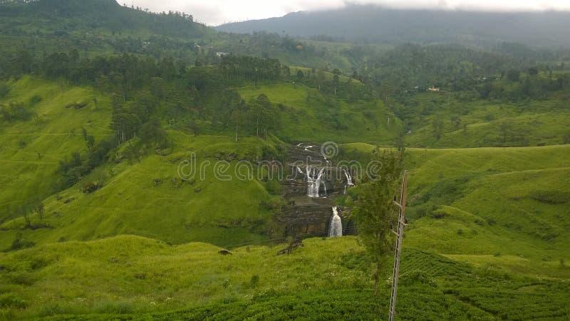 A srilankan waterfall stock photo