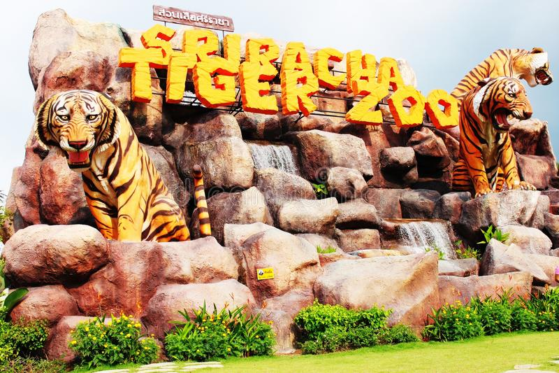 Sriracha Tailândia do jardim zoológico do tigre fotos de stock