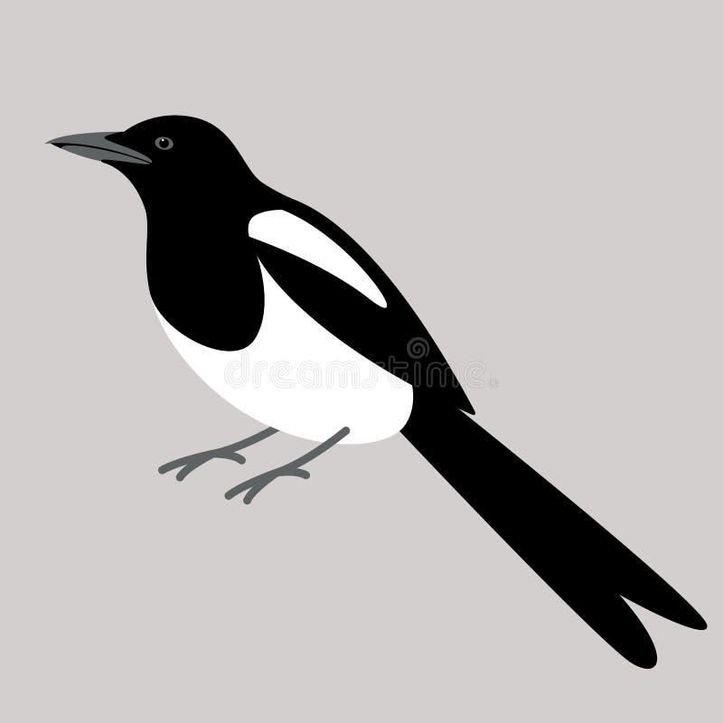Sroka ptak, wektorowa ilustracja, mieszkanie styl ilustracja wektor