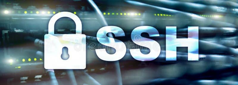 SSH, protocolo del shell seguro y software Concepto de la protección de datos, de Internet y de la telecomunicación Jefe del siti ilustración del vector