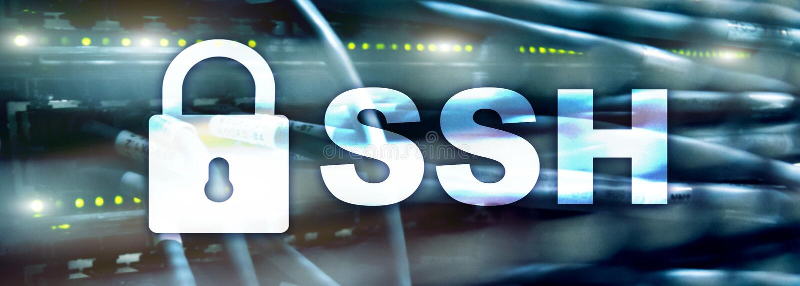 SSH, Veilige Shell-protocol en software Gegevensbescherming, Internet en telecommunicatieconcept Websitekopbal vector illustratie