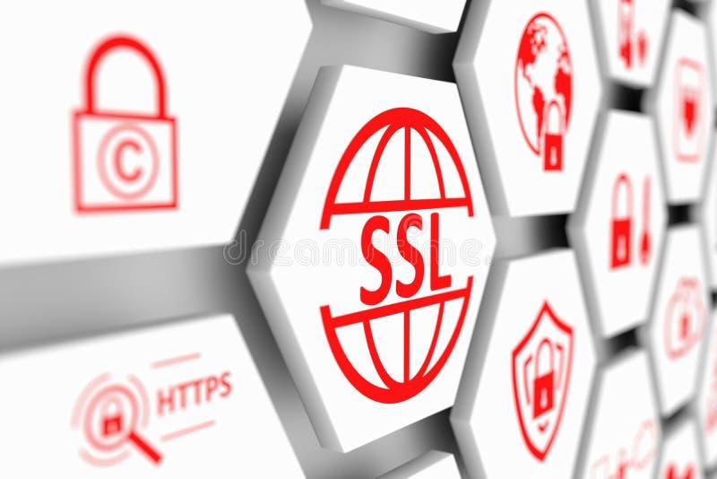 SSL concept stock illustration