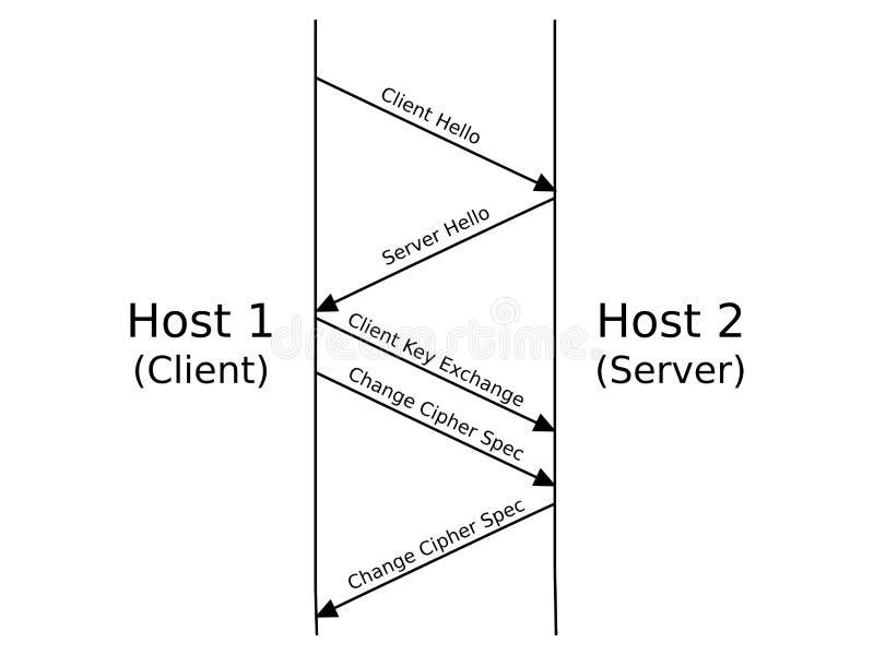 SSL-/TSLhandskakning vektor illustrationer