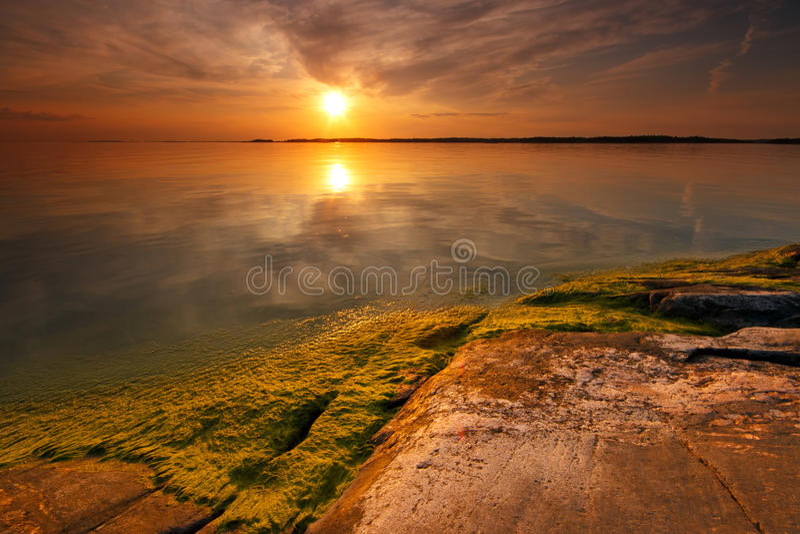 Ssummer evening sunset royalty free stock photography