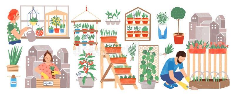 Städtische Gartenarbeitsammlung Leute zu Hause oder, die an in den Stadtkultivierungsanlagen, in den wachsenden Ernten oder im Ge stock abbildung