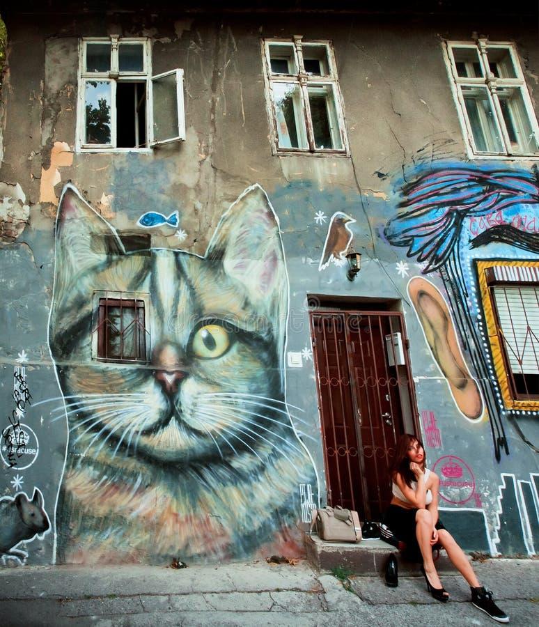 Städtische Graffitikunst auf der Wand des verlassenen Hauses in der Mitte der Stadt lizenzfreies stockbild