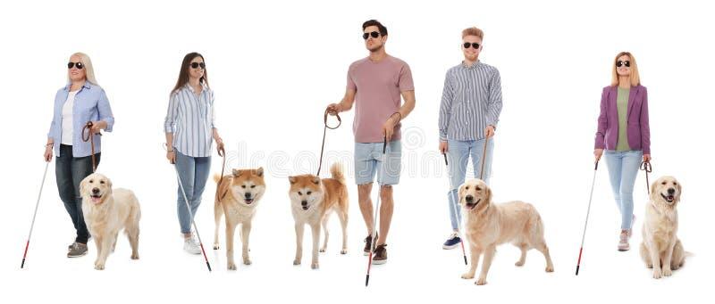 Ställ in av blint folk med lång rottingar och hundkapplöpning på vit arkivfoton