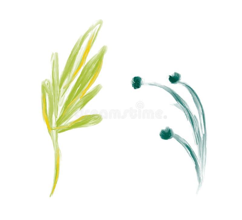 Ställ in av blomman för vektorn för den gulliga vårvattenfärghanden den utdragna Konst isolerade objektillustrationer för att gif royaltyfri illustrationer