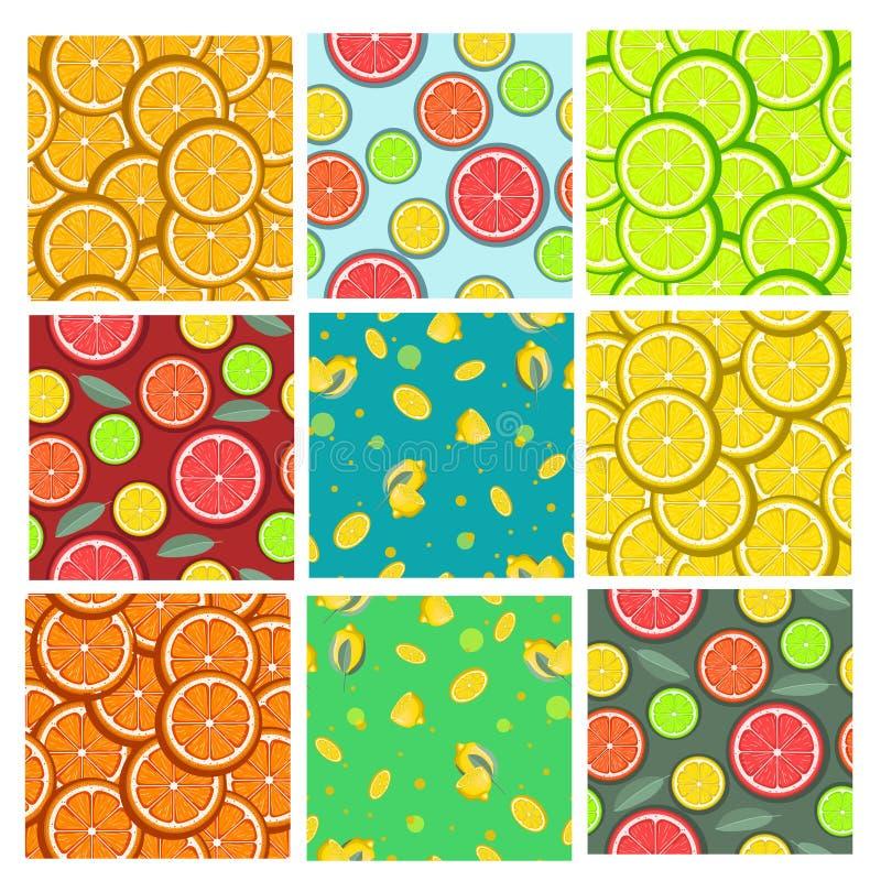 Ställ in av citrusa sömlösa modeller ocks? vektor f?r coreldrawillustration vektor illustrationer