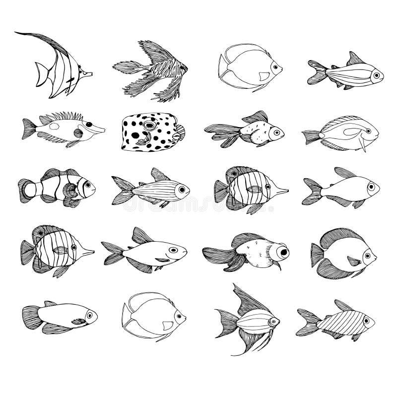 Ställ in av den marin- svarta konturen för fisken, den målade fisken för garnering royaltyfri illustrationer