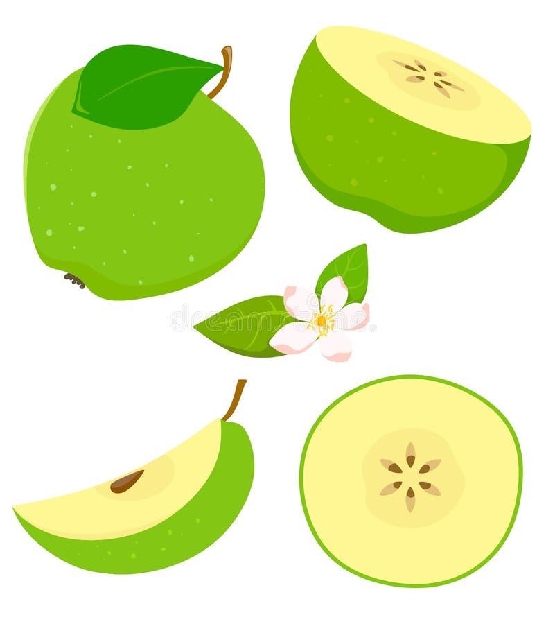 Ställ in av det isolerade gröna äpplet i tecknad filmstil med blomning white f?r vektor f?r bakgrundsillustrationhaj stock illustrationer