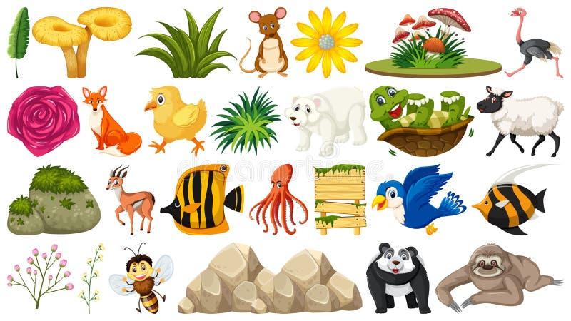 Ställ in av djur och växten royaltyfri illustrationer