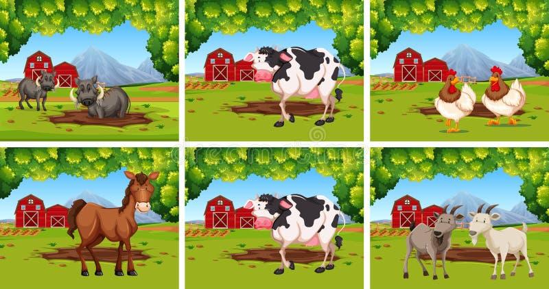 Ställ in av djur på lantgårdar vektor illustrationer