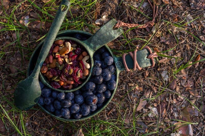 Ställ in av ecodisk Bär och torkade frukter i eco ware Mellanmål på solnedgången arkivfoto