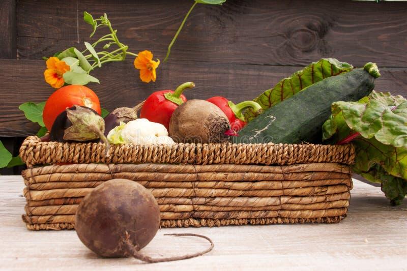 Ställ in av grönsaker i en vide- korg I förgrundsbeta royaltyfria foton