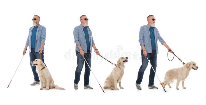 Ställ in av hög blind man med den långa rottingen och hunden royaltyfri foto