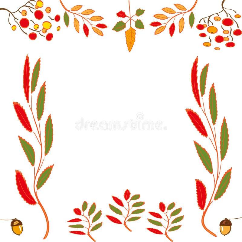 Ställ in av höstbeståndsdelar: Orange och gula sidor, rönnbär, ekollonar Isolerat skissa p? vit bakgrund royaltyfri illustrationer