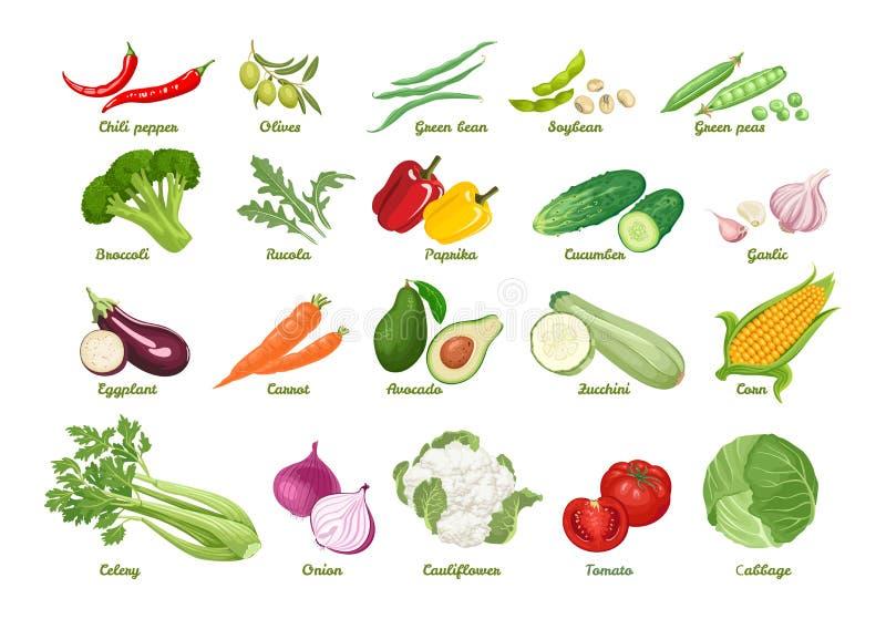 Ställ in av illustrationer av vektorgrönsaker i plan stil för tecknad film stock illustrationer