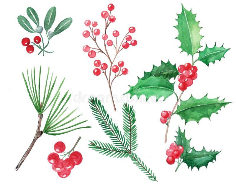 Ställ in av julbeståndsdelar, röda bär, järnek, mistel, hand D vektor illustrationer