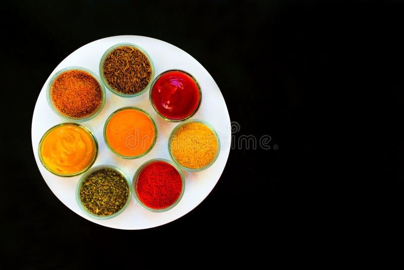 Ställ in av kryddor och örter på en vit platta Indisk kokkonst pepprar, saltar, paprika, curry, basilika, senap, gurkmeja Sikt fr arkivfoto