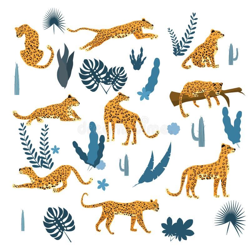 Ställ in av leoparder i olikt poserar, växter, blommor, exotisk grafisk gullig trendstil, den däggdjurs- rovdjuret, djungel vekto stock illustrationer