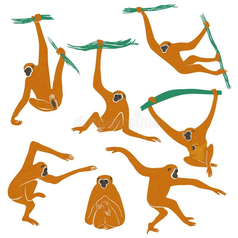 Ställ in av roliga Gibbon apasymboler royaltyfri illustrationer