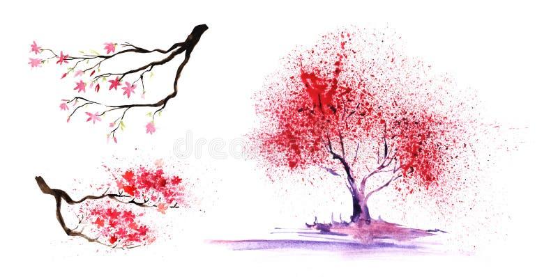 Ställ in av thtreeeelements Abstrakt färg-träd och filialer med en storartad krona Hand-dragen vattenfärgillustration royaltyfri fotografi