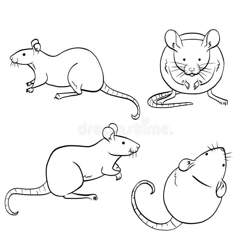 Ställ in av tjaller och mouses Isolerade mouses skissar vektor illustrationer