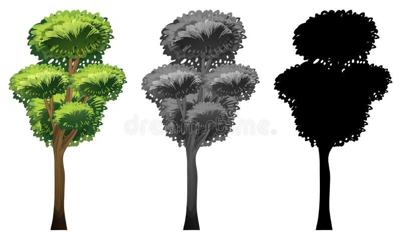 Ställ in av träddesign vektor illustrationer