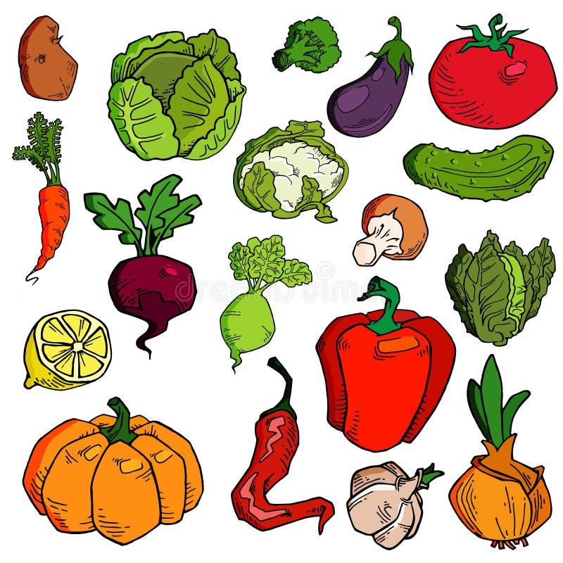 Ställ in av utdragna grönsaker för den olika handen Skissar av olik mat Isolerat på vit royaltyfri illustrationer