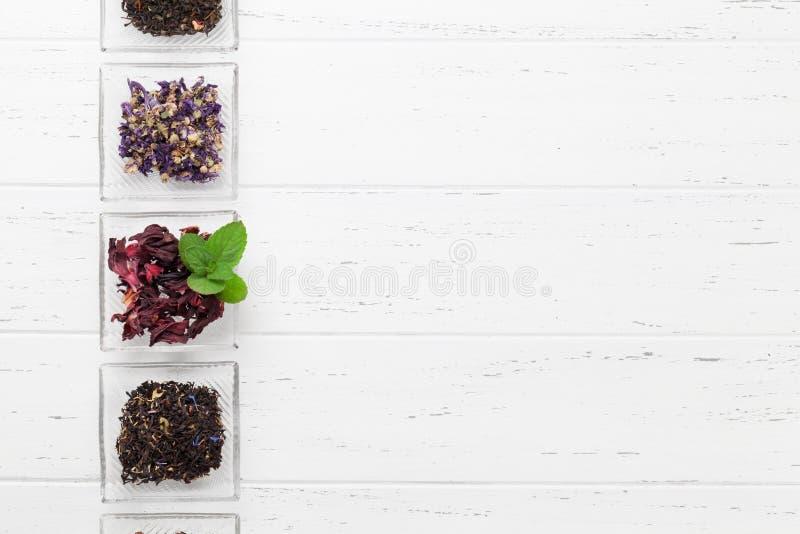Ställ in av växt- och för frukt torra teer arkivbild