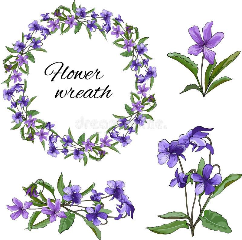 Ställ in av violetta purpurfärgade blommor på en ljus bakgrund Blom- krans av violets F?r tapet textildesign Altfiolmirabilis stock illustrationer