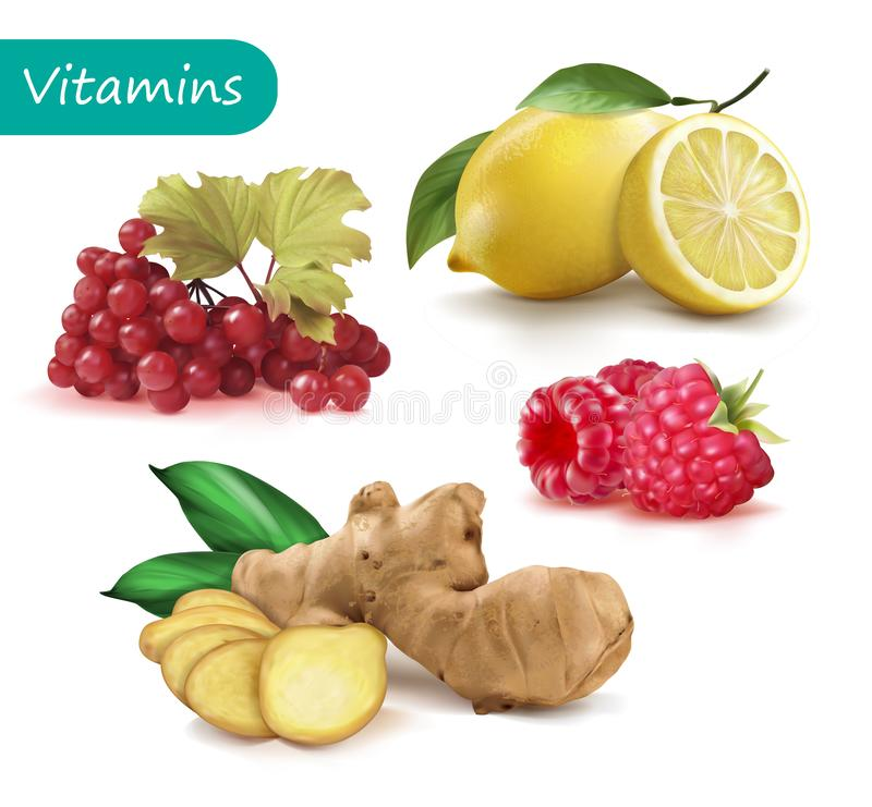 Ställ in av vitaminer för att förstärka immunitetviburnumen, citronen, ingefäran, hallon royaltyfri illustrationer