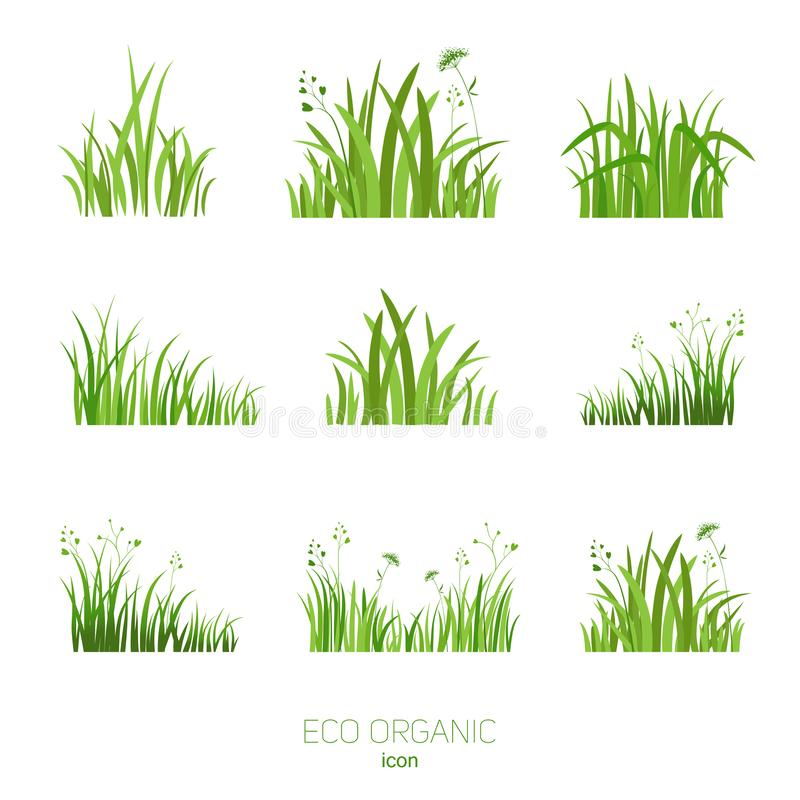 Ställ in Eco grönt gräs vektor illustrationer