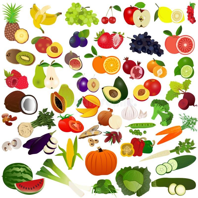 Ställ in frukter och vegies vektor illustrationer
