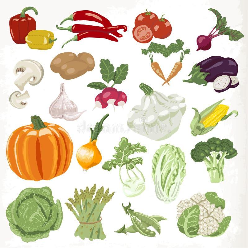 ställ in grönsaker Symboler som isoleras på vitbakgrund royaltyfri illustrationer
