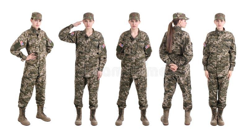 Ställ in med den kvinnliga soldaten på vit bakgrund fotografering för bildbyråer