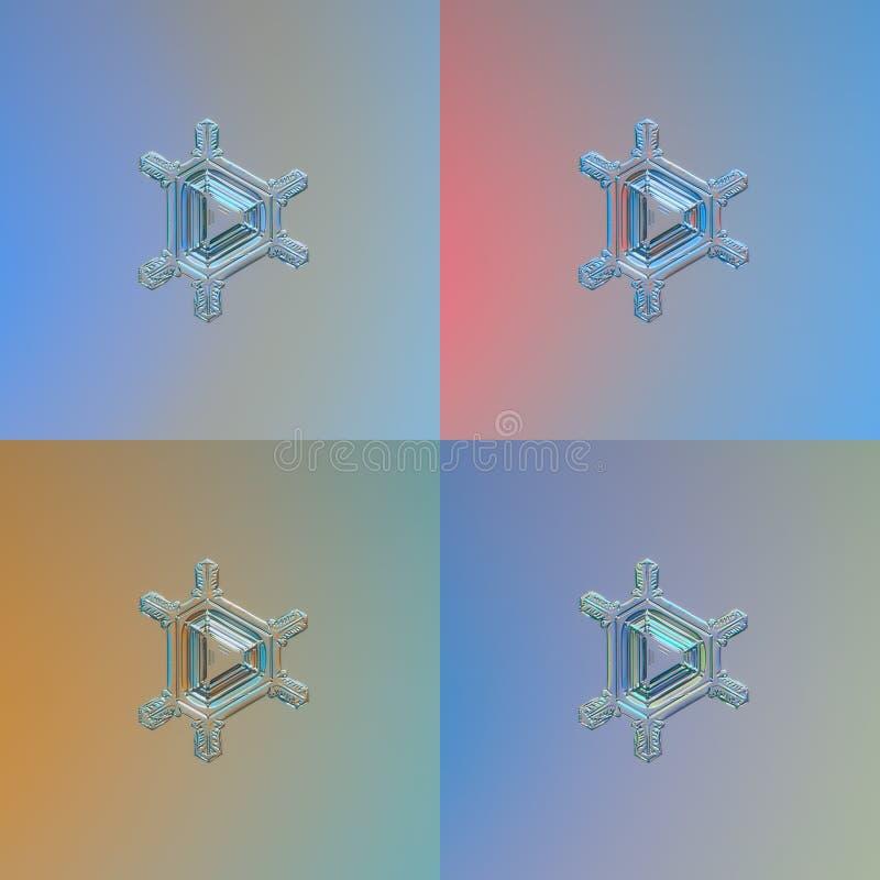 Ställ in med fyra färgvarianter av samma snöflinga royaltyfri illustrationer