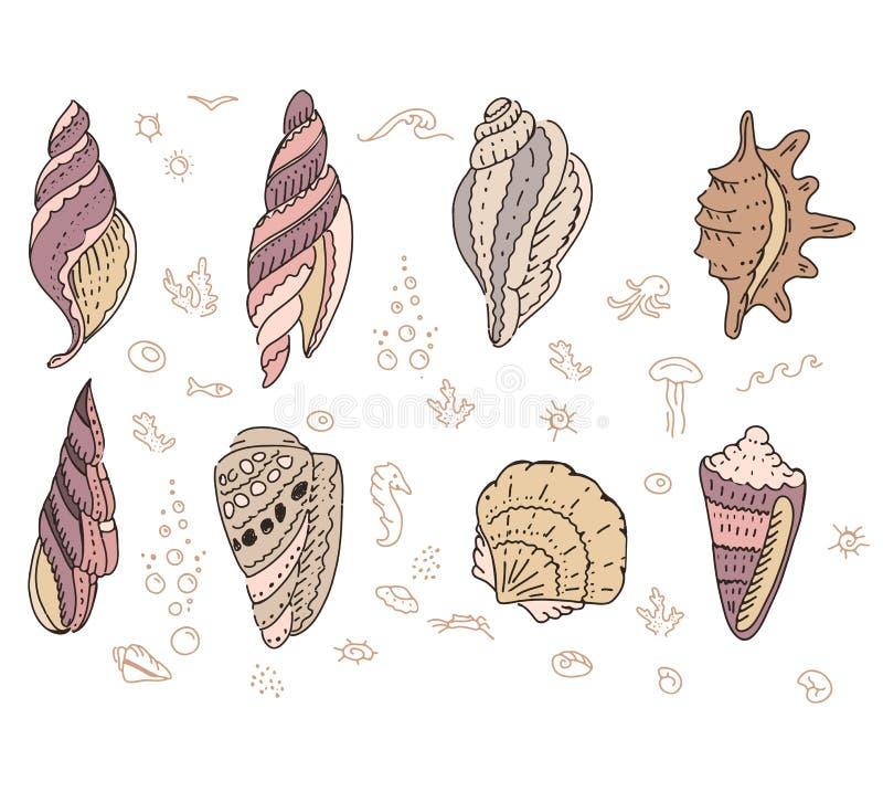 Ställ in med havsskal stock illustrationer