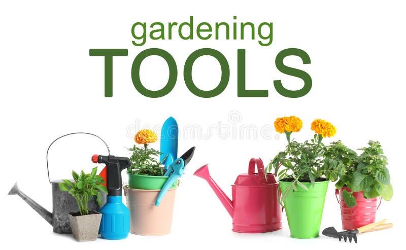 Ställ in med moderna arbeta i trädgården hjälpmedel royaltyfria foton