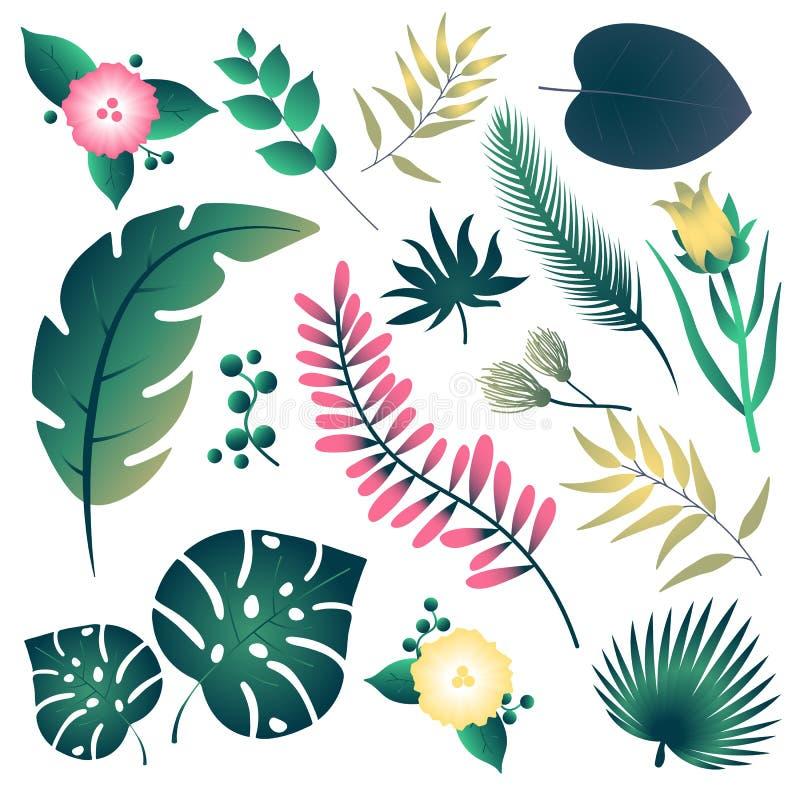 Ställ in med tropiska blad för designaffisch stock illustrationer